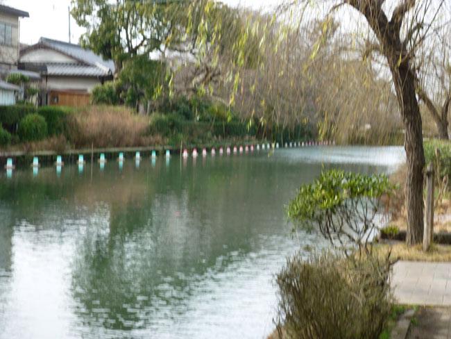 柳川に沿って